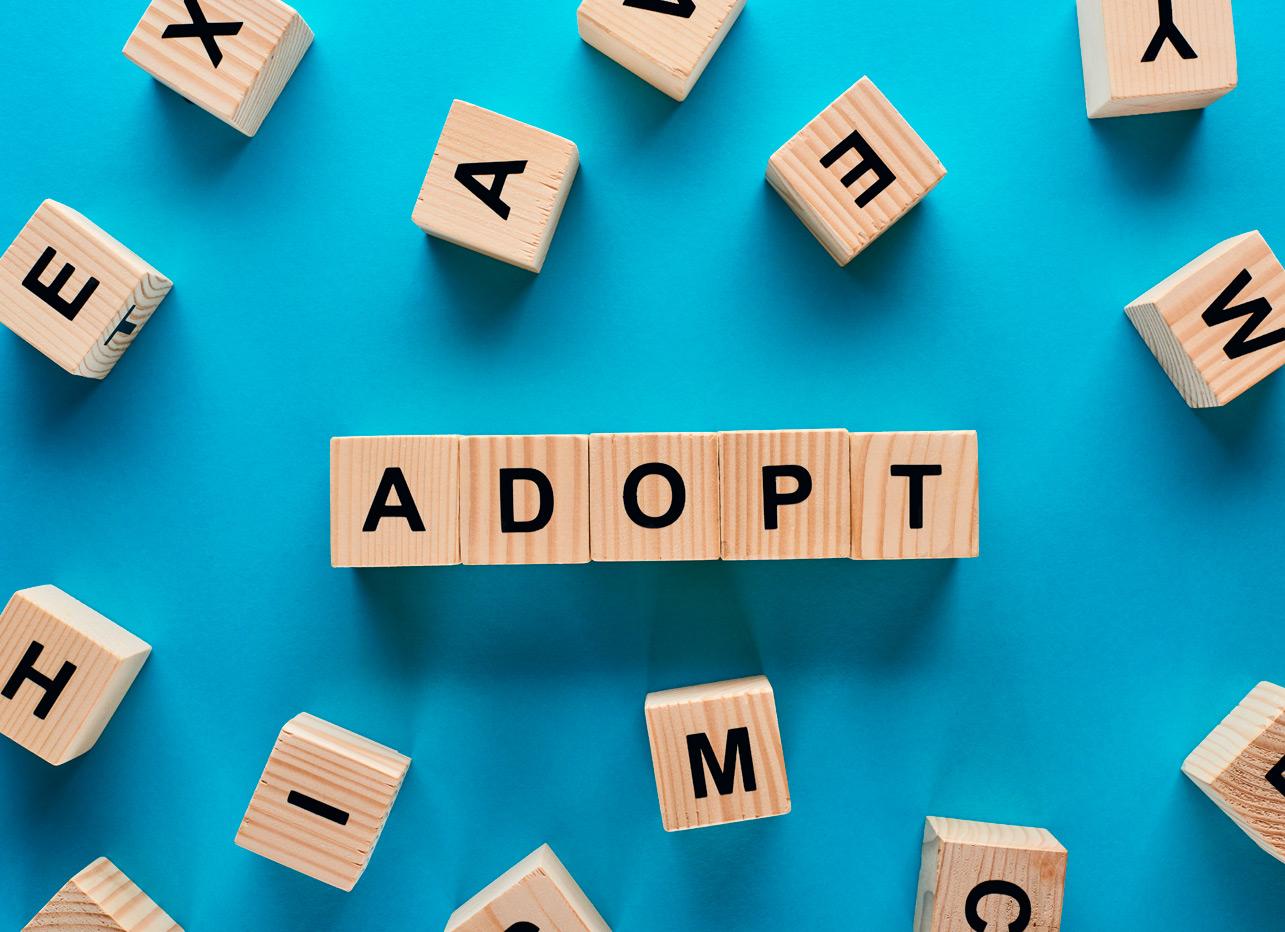 Adopciones- Agustín Cruz Soluciones Legales